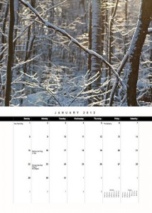 Marketing Calendar 2012