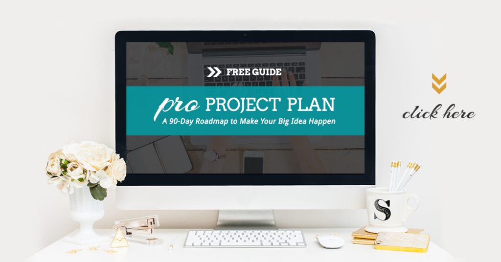 PRO Project Plan